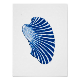 Póster Concha de peregrino Shell, azules añiles y blanco