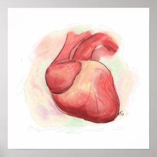 Póster Corazón humano