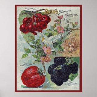 Póster cubierta del catálogo de semilla del vintage