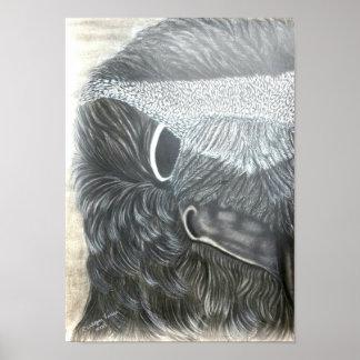 Póster cuervo 2 (izquierdos) de 2