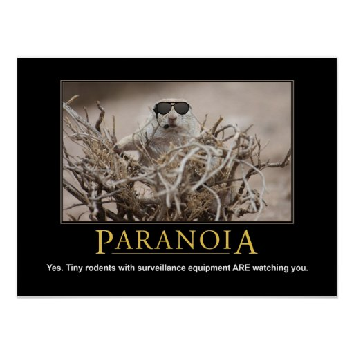 Poster de la ardilla de Demotivational: Paranoia