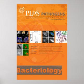 Poster de la bacteriología los patógeno de PLoS