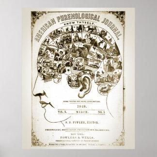 Poster de la frenología