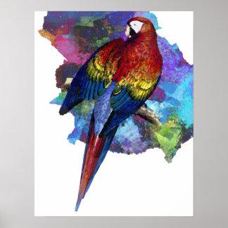 Poster de la impresión del pájaro de la acuarela d
