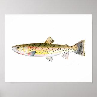 Poster de la pesca - pescado de la trucha de la mo póster