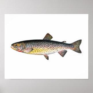 Poster de la pesca - pescado de la trucha de Tahoe Póster