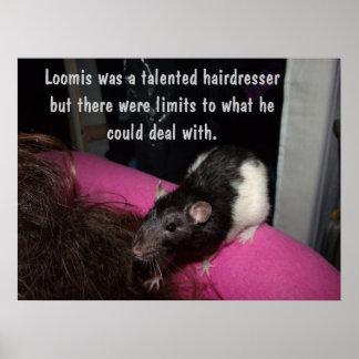 poster de la rata del peluquero