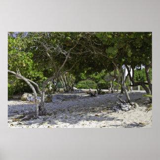 Poster de las islas de Gran Caimán
