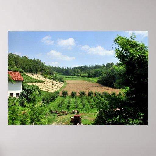 Poster de los viñedos y de los campos de Piamonte