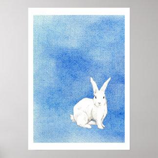 Poster del azul del conejo