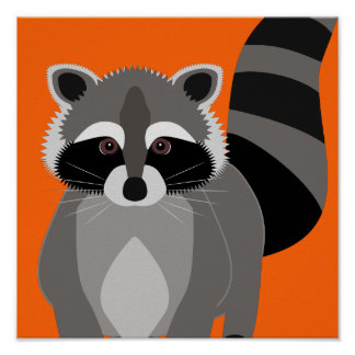 Poster del bribón del mapache póster
