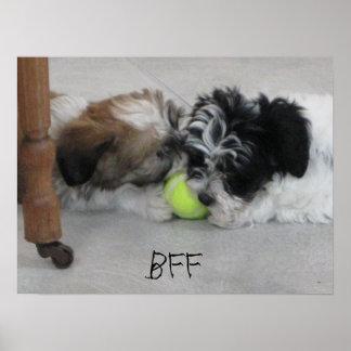 Poster del perrito de los mejores amigos de BFF