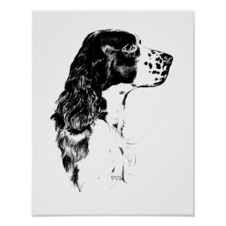 Poster del perro de aguas de saltador inglés del a