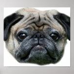 Poster del perro del barro amasado