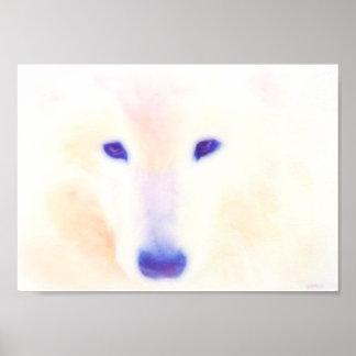 Poster del perro del samoyedo