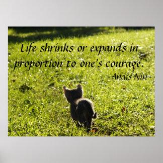 Poster del valor del gatito