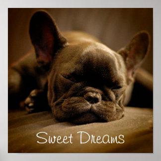 Póster Dogo francés soñoliento