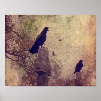 Póster Dos cuervos muy frescos