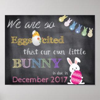 Póster El embarazo de Eggscited Pascua revela la