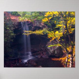 Póster El pepino cae, parque de estado de Ohiopyle,