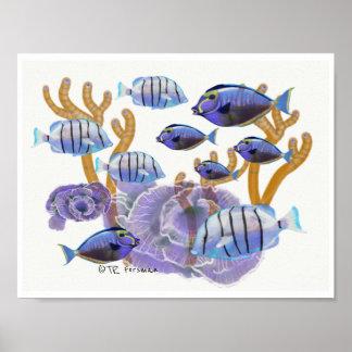Póster El pescado agrupa la natación que pinta 3c