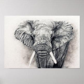 Póster Elefante en carbón de leña