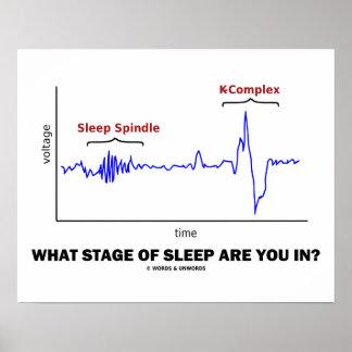 Póster ¿En qué etapa del sueño está usted?