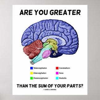 Póster ¿Es usted mayor que la suma de sus piezas? Cerebro