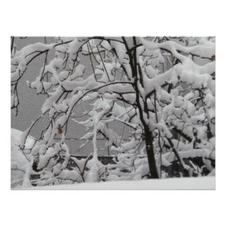 Póster Escena hermosa del invierno