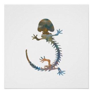 Póster Esqueleto de Hellbender