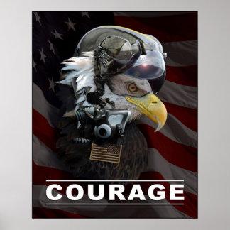 Poster experimental del valor de Eagle