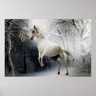 Póster Fijar a caballo blanco en la nieve