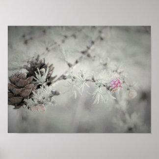 Póster Flor rosada en el alerce blanco y negro