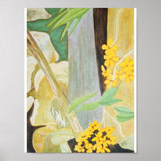 Póster Floraciones del Plumeria en la acuarela de