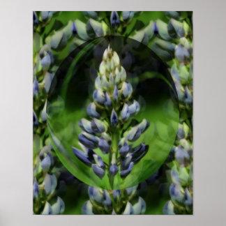 Poster floral del arte abstracto del Lupine precio