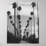 Póster Foto negra y blanca del vintage de California de