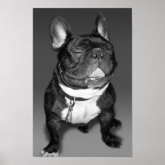 Póster Fotografía artística de una sonrisa del dogo