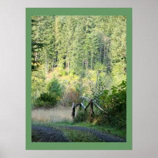 Póster Fotografía escénica del país de los árboles