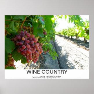 ¡Poster fresco del país vinícola! Póster