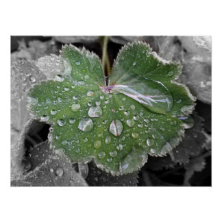 Póster fuertes lluvias