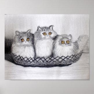 Póster gatitos