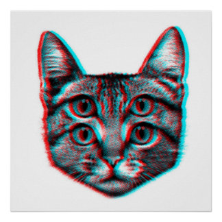 Póster Gato 3d, 3d gato, gato blanco y negro
