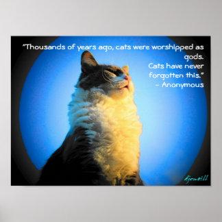 Póster Gatos adorados como dioses con cita anónima