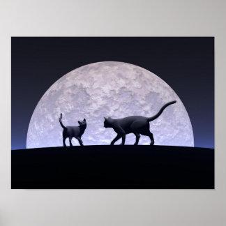 Póster Gatos románticos