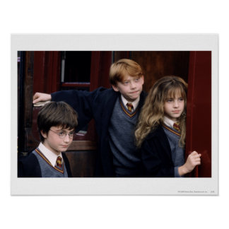 Póster Harry, Ron, y Hermione
