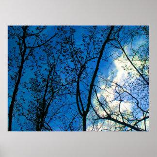 Póster Horizonte en el árbol Scapes de la caída - la isla