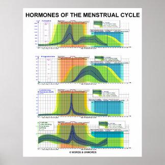 Póster Hormonas de la menstruación del ciclo menstrual