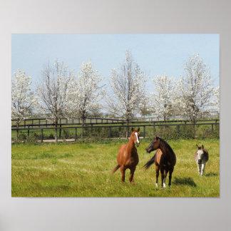 Póster Horseplay: Dos caballos y un burro en primavera