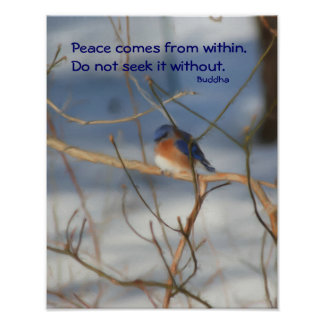 Poster inspirado de la cita de Buda del Bluebird d