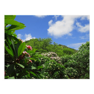 Póster Jardín del Plumeria